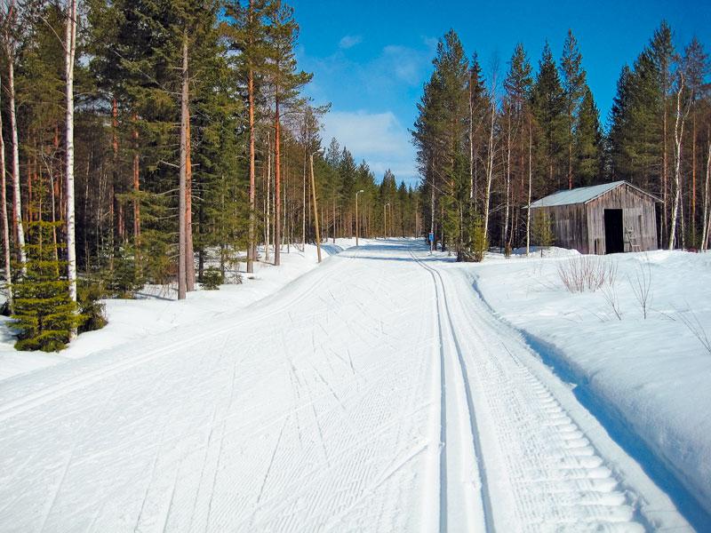 Примерно так выглядит добротная лыжная трасса где-нибудь в Европе: как правило, прогулочные трассы не очень высокого уровня сложности всегда предназначены для двустороннего движения, о чём красноречиво говорит табличка, стоящая сбоку от лыжни. На таких трассах всегда нарезана классическая лыжня в обоих направлениях, да и коньком на этих трассах вполне можно разъехаться на встречных курсах. фото: Иван Исаев