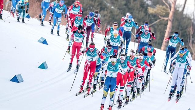 Норвегия повторила рекорд США поколичеству наград наодной Олимпиаде