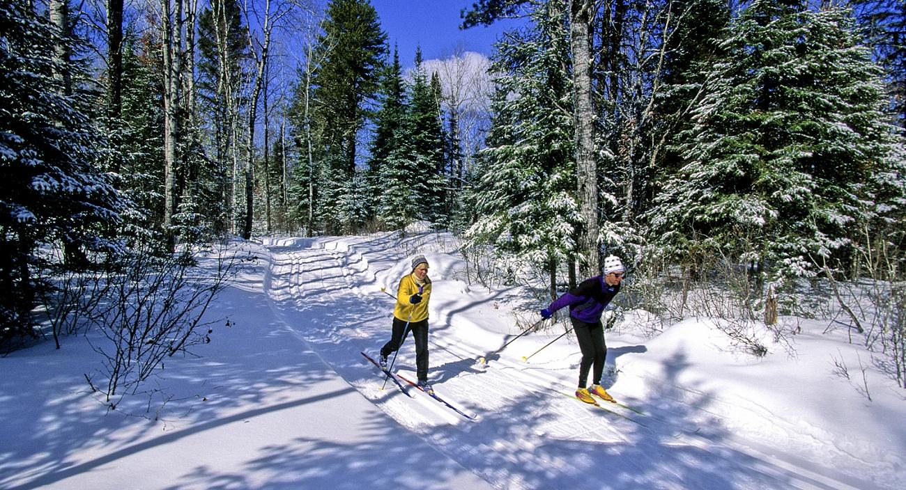 Лыжи в Мещерском парке: мнение мастера спорта Фёдора Тихонова