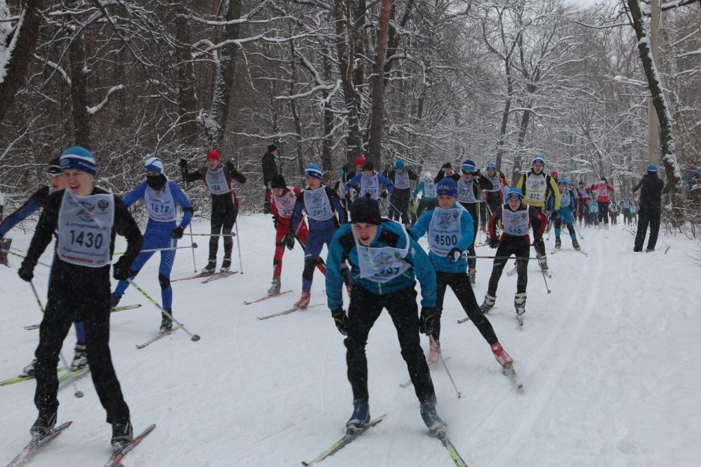 Лыжные трассы в воронеже на олимпике